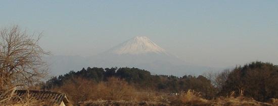 kisetsu110328.JPG